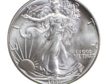 Silver Eagle 1986