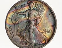 Silver Eagle 1989